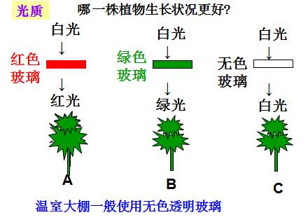 中考作文素材初二英语语法中考满分作文初一英语语法