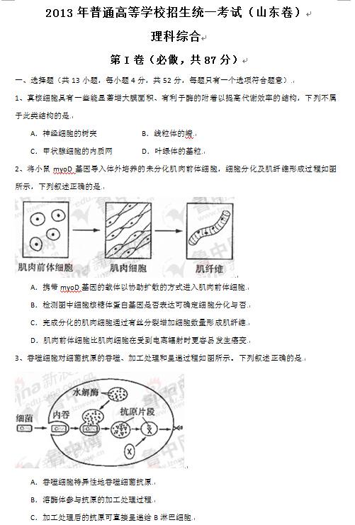 山东2013高考理科综合试题及答案(下载版)