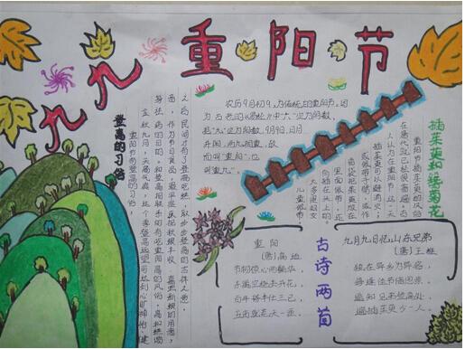 关于重阳节的手抄报:九九重阳节图片