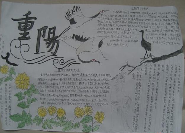 关于重阳节的手抄报:重阳节演变过程图片
