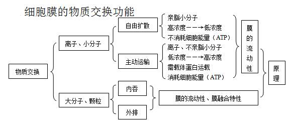 电路 电路图 电子 设计 素材 原理图 579_247