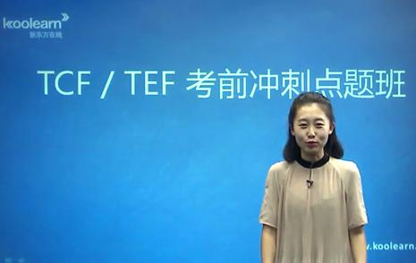 法语TCF/TEF考试语法题型介绍