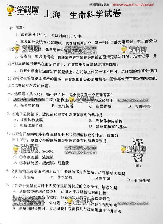 2016上海高考生物试题及答案