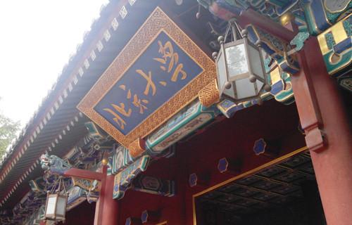 留学生们眼中的中国高等教育是怎样的?(双语)