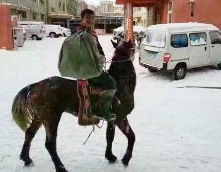 内蒙古降大雪,快递小哥骑马送快递(双语)