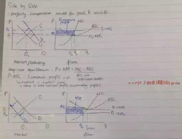 ap微观经济学重点知识的总结