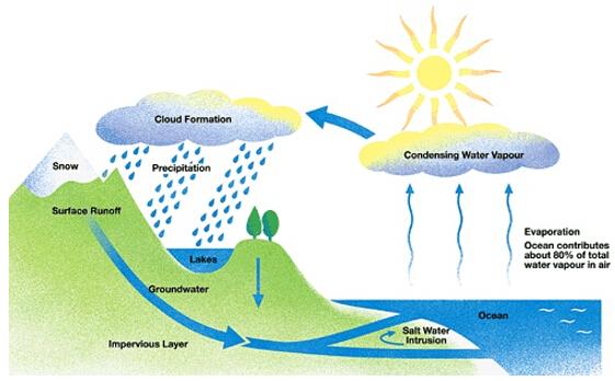 雅思写作小作文流程图考官范文:水循环