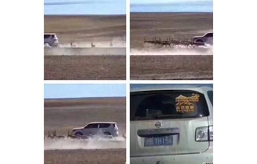 7人驾驶越野车追赶藏羚羊 被罚款10余万元(双语)