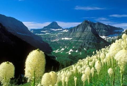 托福背景材料:美国国家公园图6
