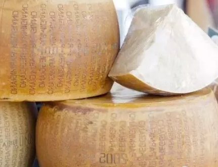 托福词汇:奶酪陷阱英文单词怎么说