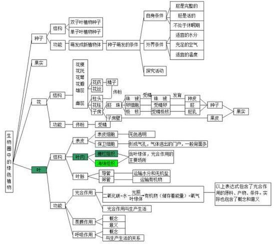 2018中考生物知识点结构图:生物圈中的绿色植物