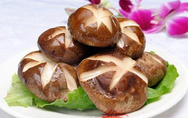 常见的食用菌种类韩语说法:표고버섯香菇