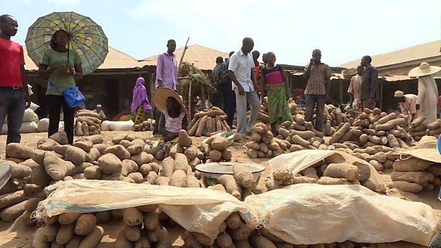 尼日利亚山药产量居世界第一位