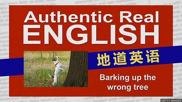 """英国人用 """"喊错了树""""表示""""攻击错了目标"""""""