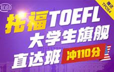 大学生旗舰直达班 (冲110分)