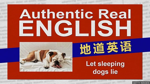 Let sleeping dogs lie 别惊动睡着的狗