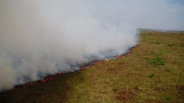 Wildfires in the UK 英国夏日野火烧遍荒野