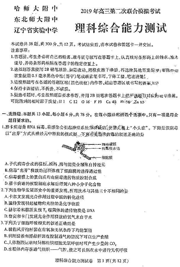 2019东北三省三校高三二模理综试题及参考答案