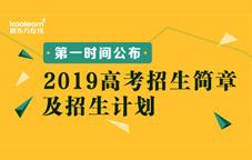 2019招生簡章