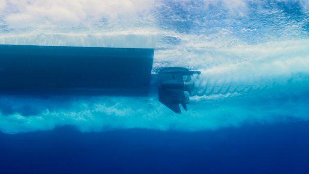 Underwater sound pollution 水下噪音污染危及海洋生物的听力健康