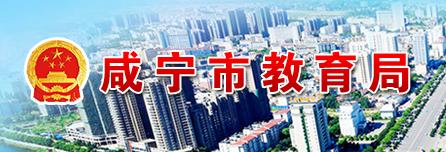 2019湖北咸宁中考成绩查询入口